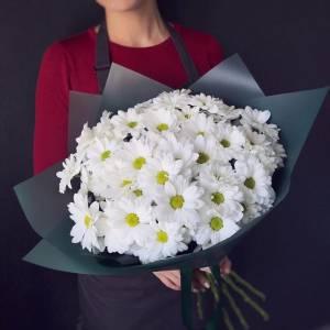 Букет 7 веток белой хризантемы с темным оформлением R1221