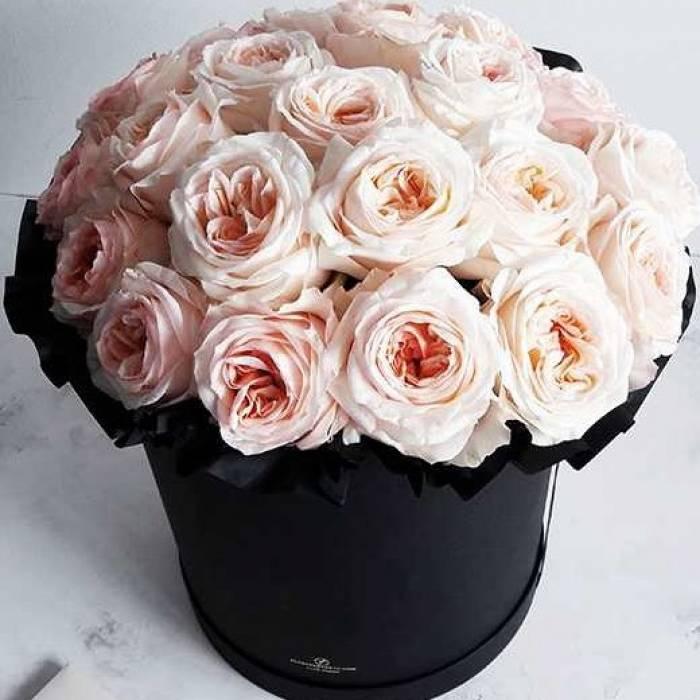 25 крупных пионовидных роз в коробке R202
